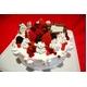 【賞味期限2月28日まで 2010年クリスマス仕様】訳ありオリジナルのクリスマスケーキが作れちゃう 手作りケーキセット - 縮小画像1