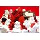 【賞味期限2月28日まで 2010年クリスマス仕様】訳ありオリジナルのクリスマスケーキが作れちゃう 手作りケーキセット - 縮小画像2