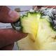 【産地直送お取り寄せ・季節限定沖縄産フルーツ】スナックパイン - 縮小画像4