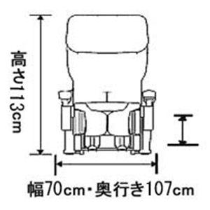 フジ医療器 マッサージチェア KEN OKUYAMAモデル KN-15RE レッド