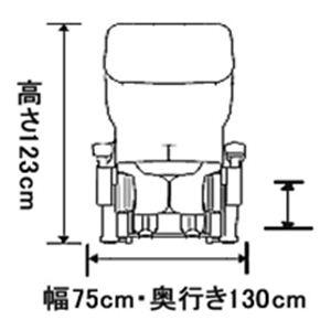 フジ医療器 マッサージチェア CYBER-RELAX(サイバーリラックス) AS-740BK ブラック