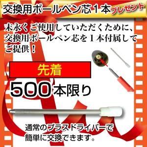 ペン型ビデオカメラ 匠ブランド Regulus レグルス