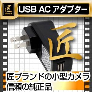 USB ACアダプター 5V 1000mA(匠ブランド)小型カメラ用 - 拡大画像