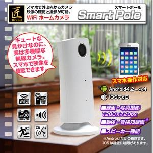 【WiFi搭載 / スマホ&ネットワーク接続対応】ホームカメラ 匠ブランド『Smart Pole』スマートポール