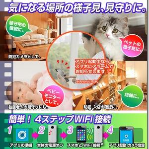 【ホームカメラ】WiFiホームカメラ(匠ブランド)『Smart Pole』(スマートポール) f04