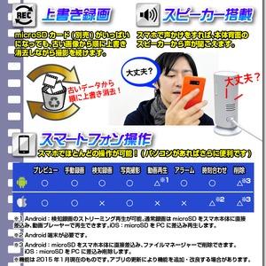 【ホームカメラ】WiFiホームカメラ(匠ブランド)『Smart Pole』(スマートポール) f06