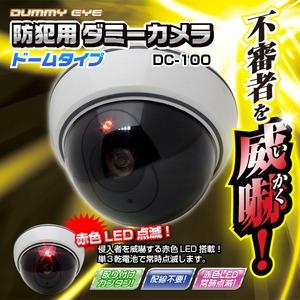 【屋外】防犯用ダミーカメラ(ドームタイプ)DC-100 - 拡大画像