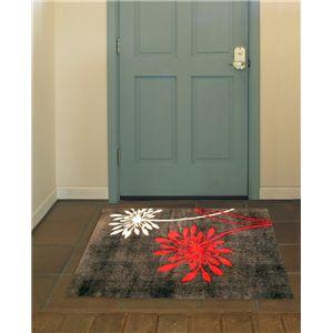 アクリル玄関マット レム 50×80 ブラウン - 拡大画像