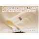 今治産タオルケット【無撚糸隠しパイル】 シングル【140×200cm】べージュ - 縮小画像3