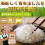 【平成22年産新米】 澤田農場のオリジナルブレンド米(三和音)白米(5kg×3袋)
