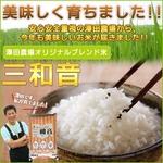 【平成22年産新米】 澤田農場のオリジナルブレンド米(三和音)玄米(5kg×4袋)
