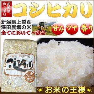 【平成25年産】 澤田農場の新潟県上越産コシヒカリ玄米 20kg(5kg×4袋) - 拡大画像