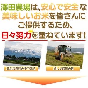 【平成28年産】 澤田農場の新潟県上越産コシヒ...の紹介画像3