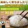 玄米 20kg(5kg×4袋)