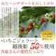 斉藤いちご農園のいちごジェラート 10個入 写真2