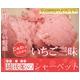 斉藤いちご農園のいちごシャーベット 10個入 - 縮小画像1