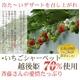 斉藤いちご農園のいちごシャーベット 10個入 写真2