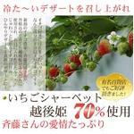 斉藤いちご農園のいちごシャーベット 10個入