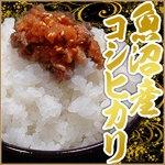 【平成22年産新米!】中村農園の魚沼産コシヒカリ白米10kg(5kg×2袋)【送料無料】