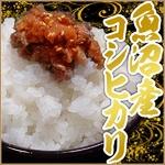 【平成23年産新米!】中村農園の魚沼産コシヒカリ玄米20kg(5kg×4袋)
