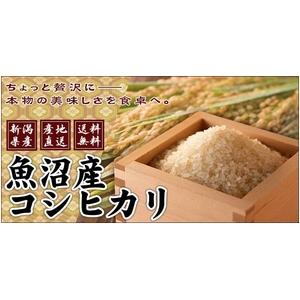 【平成27年産】中村農園の魚沼産コシヒカリ玄米20kg(5kg×4袋)