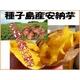 種子島産安納芋 5kg ≪送料無料≫ 写真1