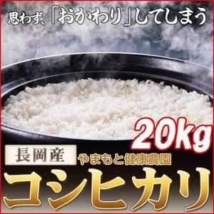【平成22年産】やまもと健康農園の長岡産コシヒカリ玄米 20kg(5kg×4袋) - 拡大画像