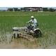 【訳あり】やまもと健康農園の新潟県長岡産コシヒカリ白米20kg(5kg×4袋) - 縮小画像3