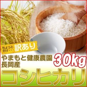 【訳あり】やまもと健康農園の新潟県長岡産コシヒカリ白米30kg(30kg×1袋) - 拡大画像