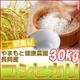 【訳あり】やまもと健康農園の新潟県長岡産コシヒカリ白米30kg(30kg×1袋) - 縮小画像1