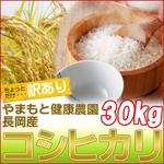 【訳あり】やまもと健康農園の新潟県長岡産コシヒカリ白米30kg(5kg×6袋)【送料無料】