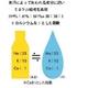 発汗時の水分補給500ml×24本 写真3