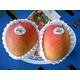 メキシコ産 ビーナスマンゴ 3個入り(約600g)画像