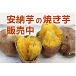 安納芋の焼き芋 2Kg