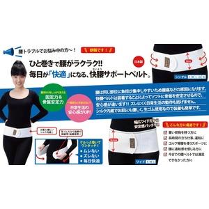 快腰サポートベルト ワイド (Mサイズ)の商品画像