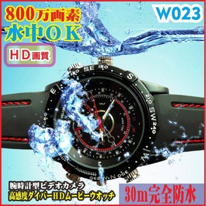 【電丸】【小型カメラ】腕時計型 ムービーHDダイバーカメラ  W023 (防水30m HD画質 800万画素)