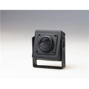 コロナ電業 マイク内蔵超小型カラーCCDカメラ ブラック TR-07CPM