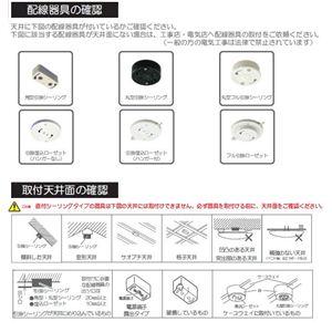 シーリングファン TCF-6430 【照明付き天井扇】