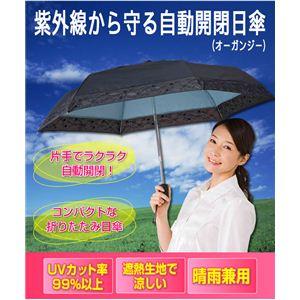 紫外線から守る自動開閉日傘(オーガンジー)