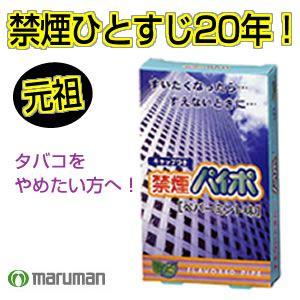 禁煙パイポ 10個セット ペパーミント - 拡大画像