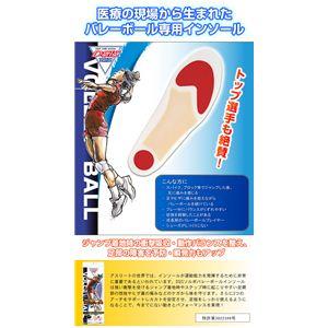 DSISソルボバレーボール M (インソール/靴の中敷き) - 拡大画像
