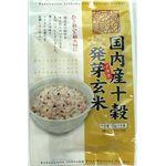 1001011 国内産十穀物プラス 発芽玄米 25g×6p×10袋