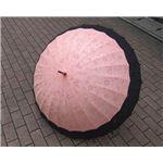 桜音符 不思議傘(桃花色に黒)