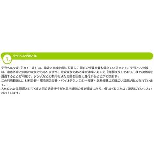 【美顔器】テラカレントフェイスローラー