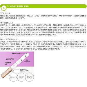 【美顔器】テラカレントフェイスローラー 2本セット