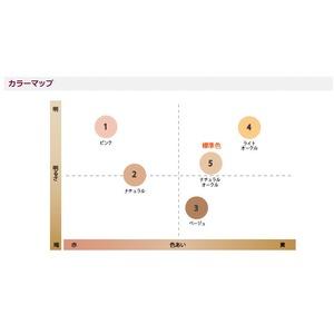 エバメール ファンデーションゲル(4ライトオークル)30g 【3個セット】