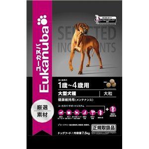 Eukanuba(ユーカヌバ) メンテナンス中型犬種7.5Kg (ドッグフード) 【ペット用品】 - 拡大画像