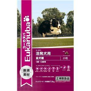 Eukanuba(ユーカヌバ) 活発犬用 オリジナル小粒 7.5Kg (ドッグフード) 【ペット用品】 - 拡大画像