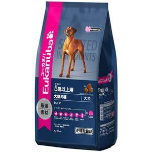 プロクター&ギャンブル・ジャパン ユーカヌバ 5歳以上用 シニア 大型犬種(大粒) 13.5kg【ペット用品】【犬用・フード】