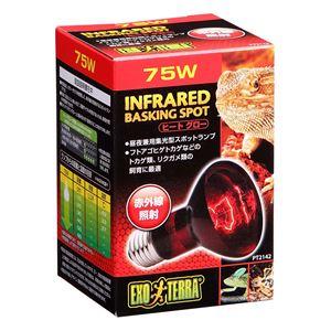 ジェックス ヒートグロー赤外線照射ランプ 75W PT2142 【ペット用品】 - 拡大画像